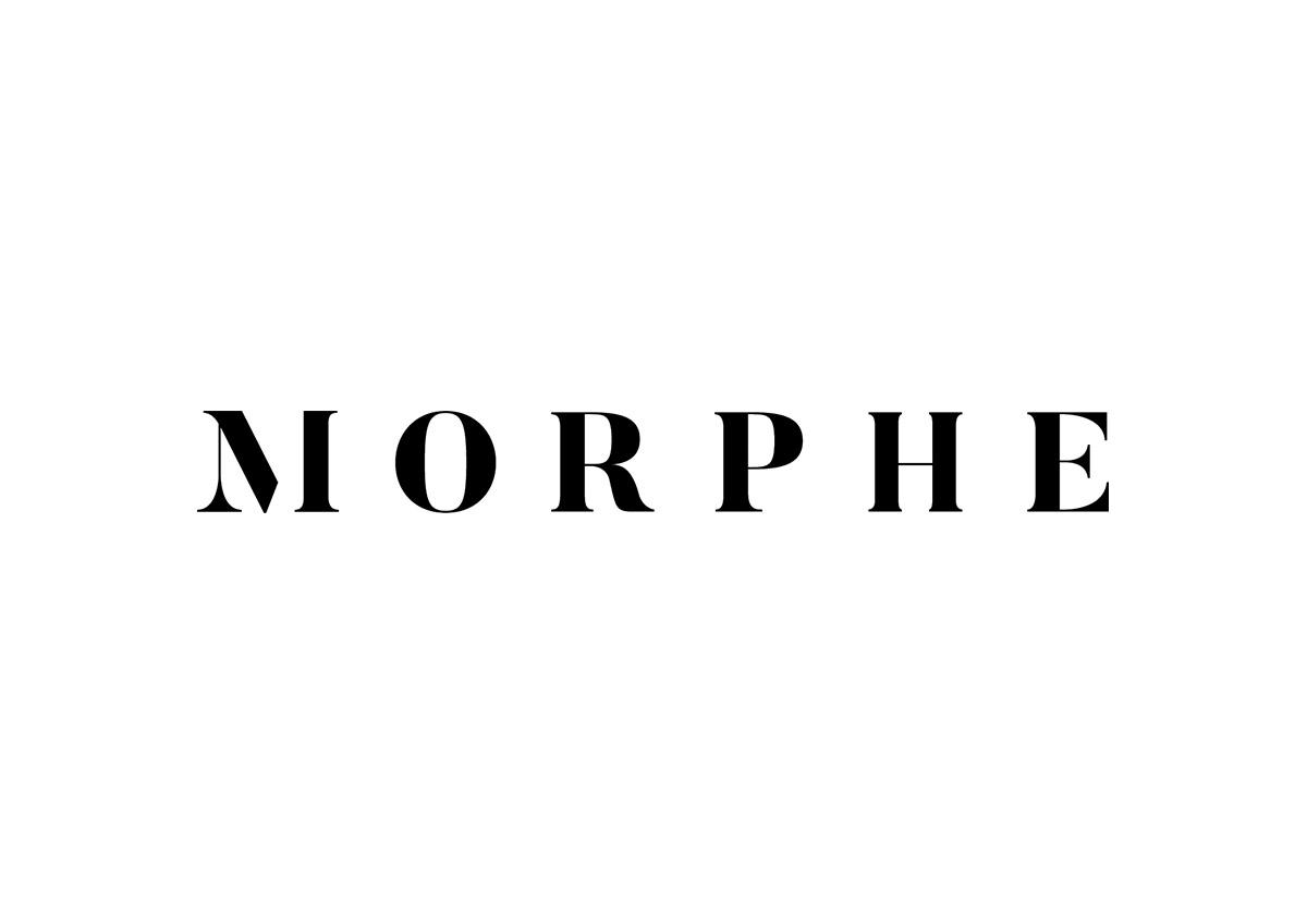 Morphe Final Concept