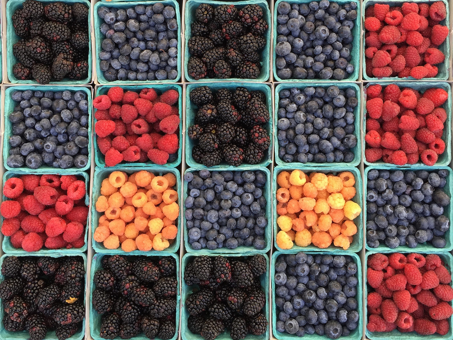 berry selection
